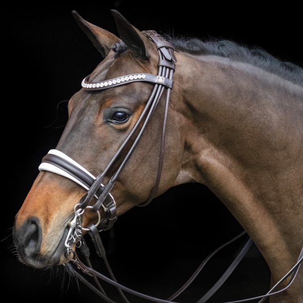 R-838-SD-Belissimo-rolled-double-bridle-1.w610.h610.backdrop