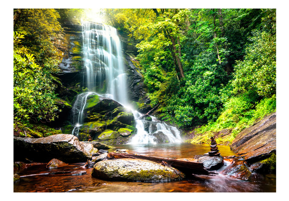 Fototapet - Wonder of nature1