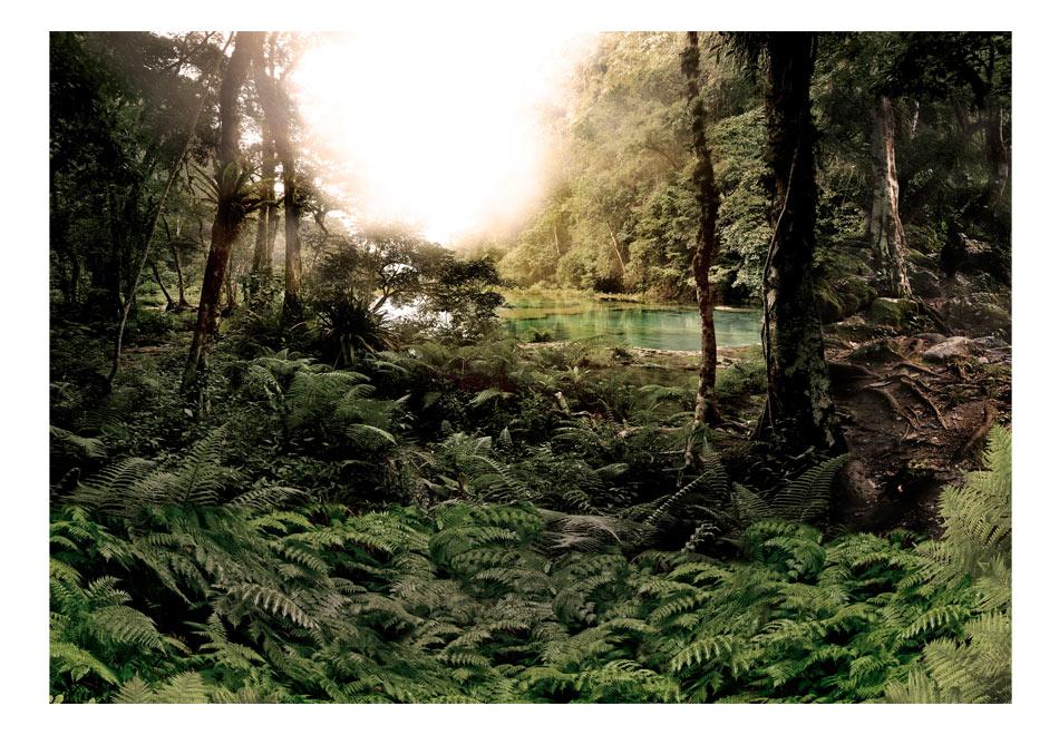Fototapet - In shade of Trees