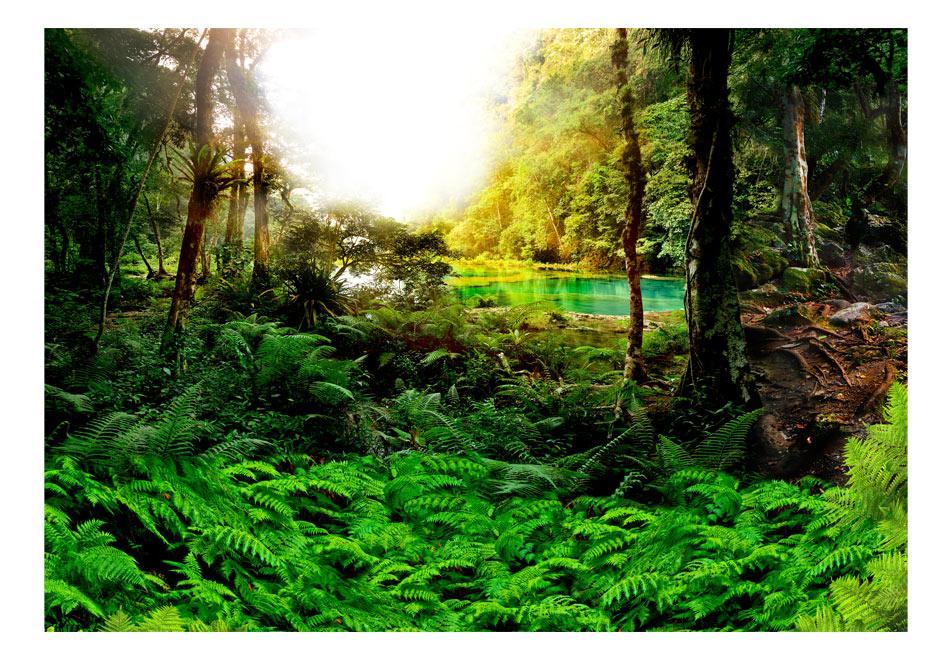 Fototapet - In tropics1