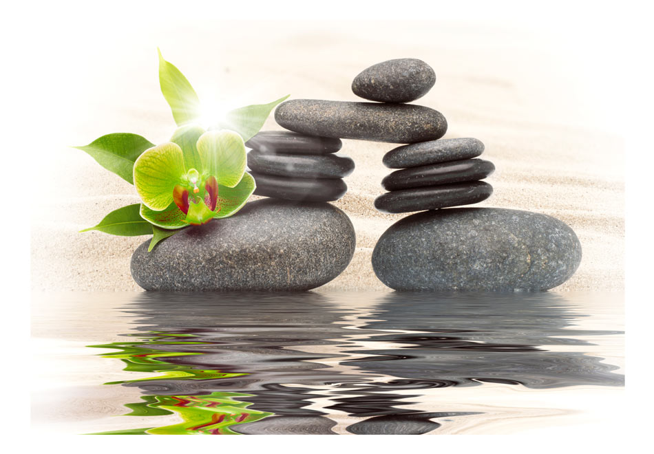 Fototapet - Green orchid and zen stones1