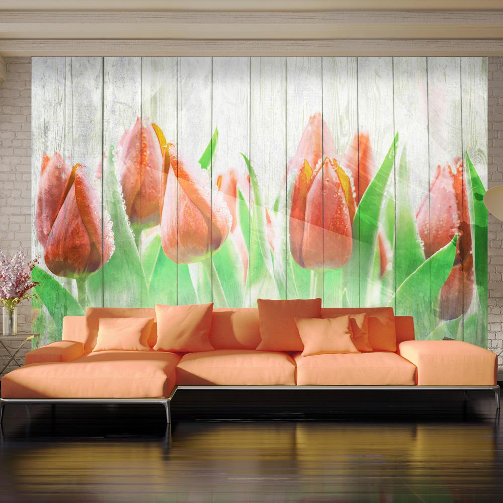 Fototapet - Red tulips on wood