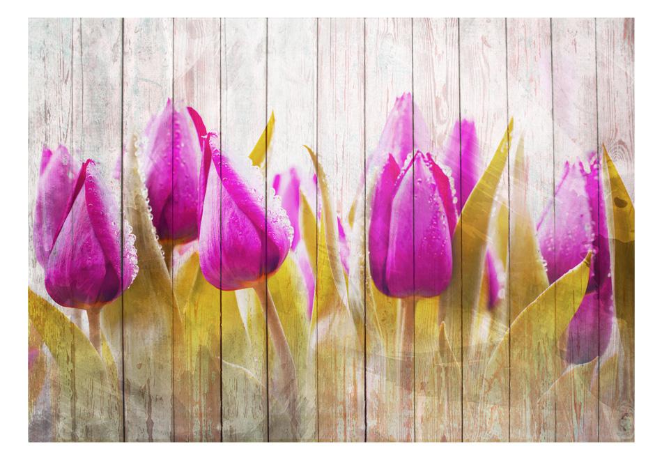 Fototapet - Autumn tulips1