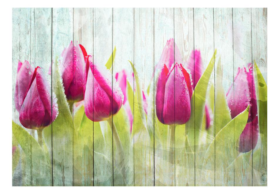 Fototapet - Tulips on white wood1