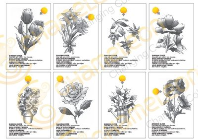 color-card-flowers-grey