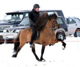 Father Fróði - receiving 8.85 for riding abilities!