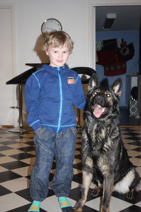Martin min systerson 6år med favvo hunden RixDivans Axa