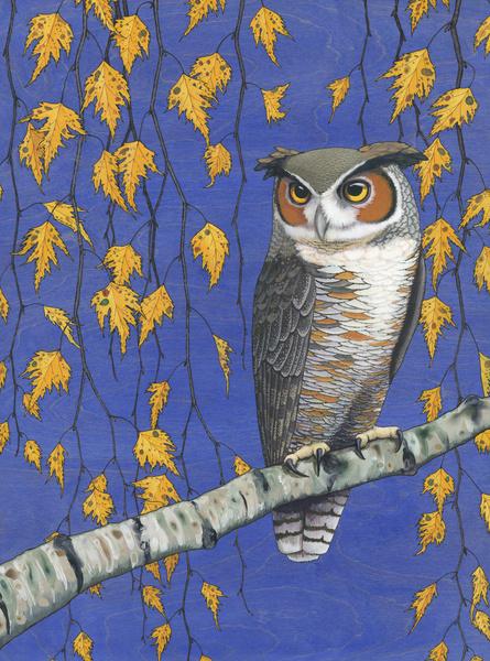 Owl Be Okay by Kate Halpin
