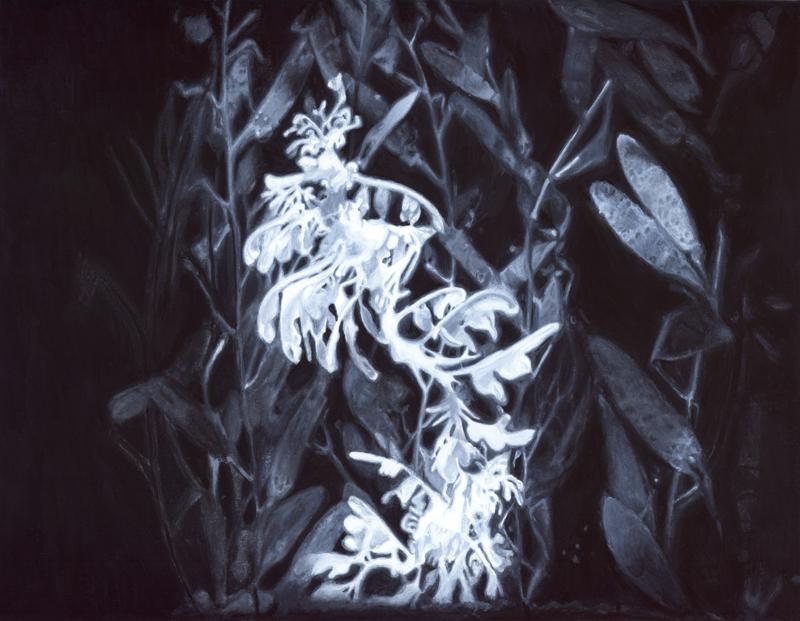 Christine Ödlund/Leafy Sea Dragon, 2009 / Gouache on paper, 28 x 36 cm.