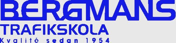 Bergmans trafikskola Logotype v2_kop_3
