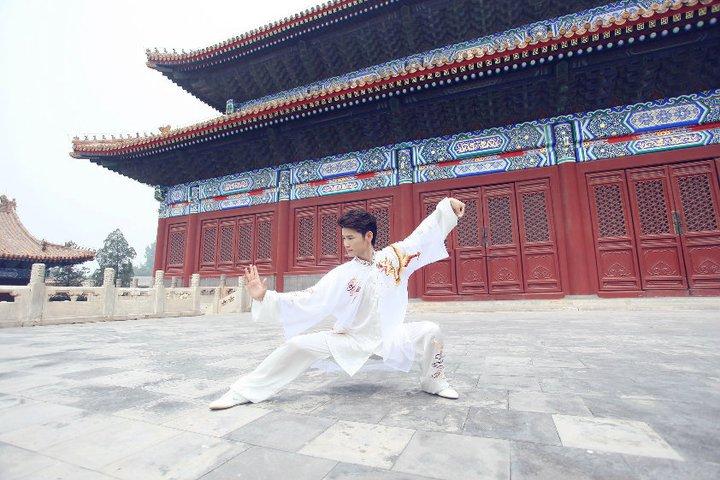 Jiping Wang, instruktör i Taijiquan