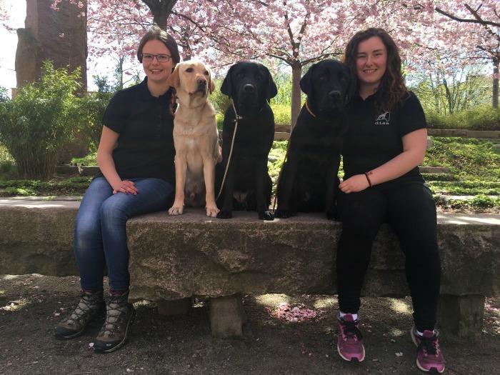 Hanna och Simona poserar sista dagen med labradorerna Rex, Ellie och Kingen, som är i träning till ledarhund. Extra proffsigt med DISA-tröjan på :).