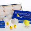 Lanolin-Ägg-Tvål 6x50g