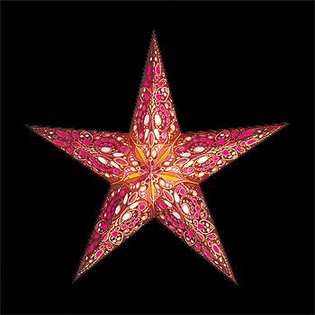 Julstjärnor/Starlightz - XMS star Rani
