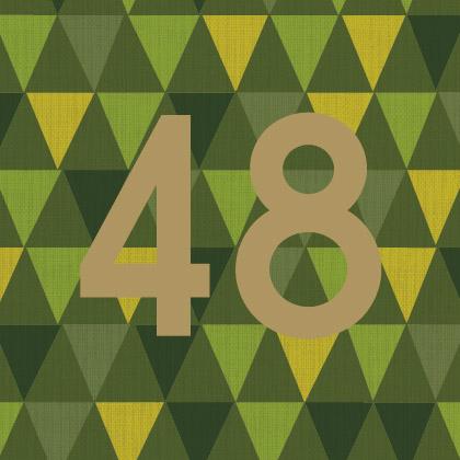48 copy