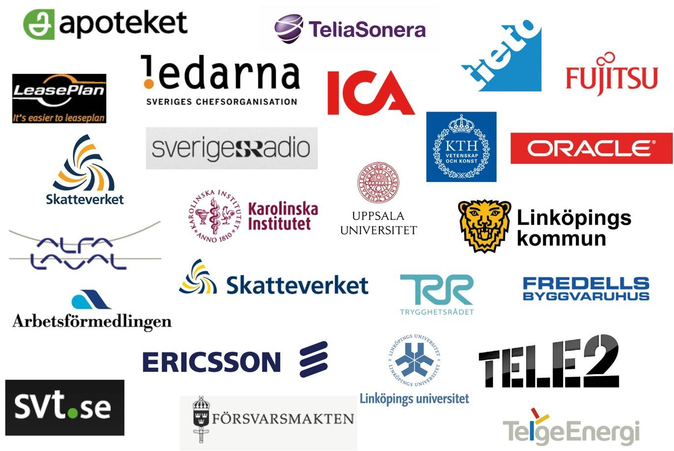 it företag i sverige