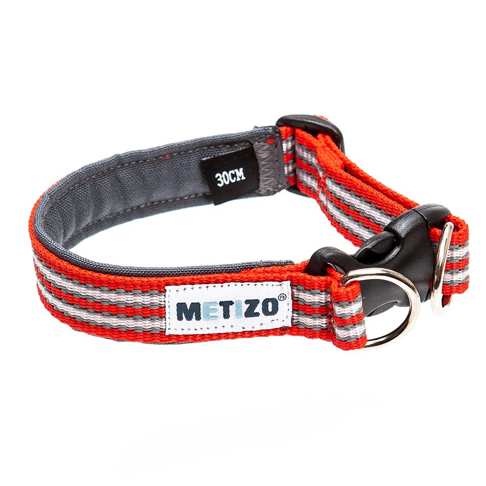 Halsband fast röd_3576-1594053432669