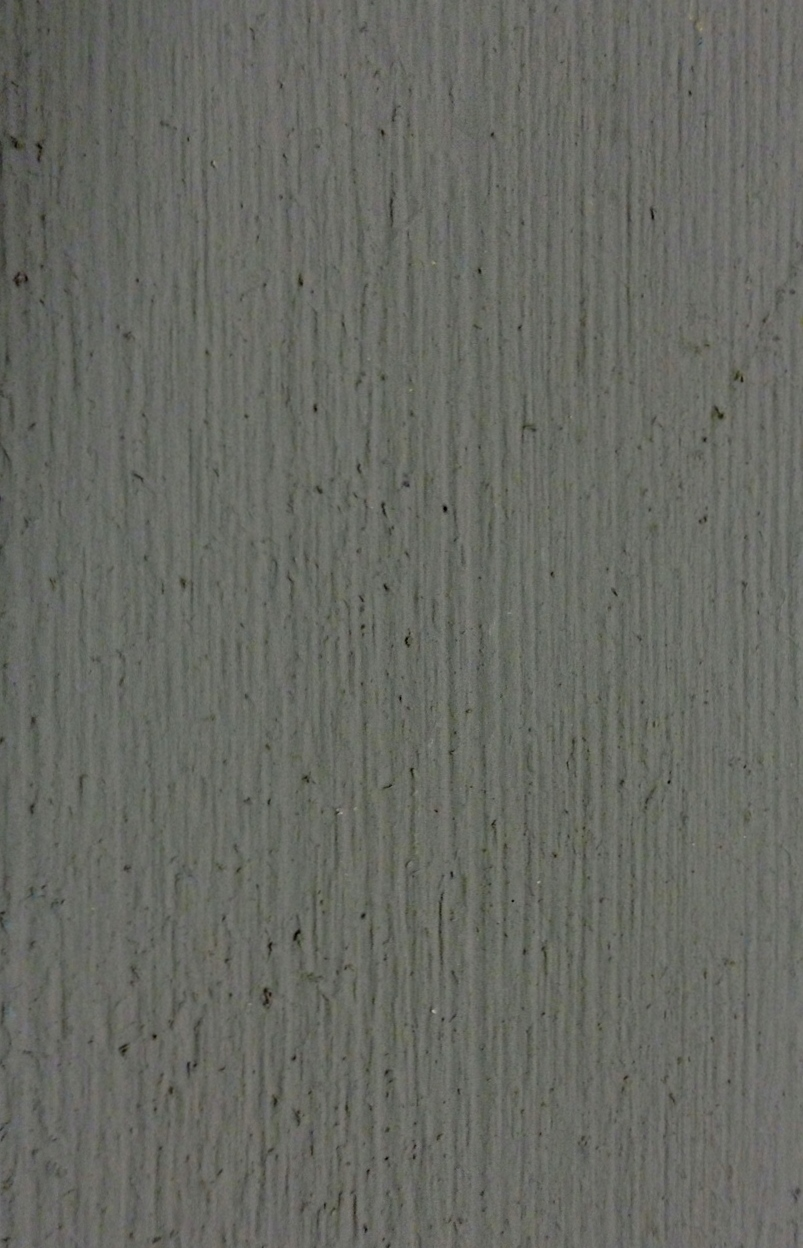 Robyggegrå