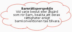 PappaBarn - Barnrättsperspektiv