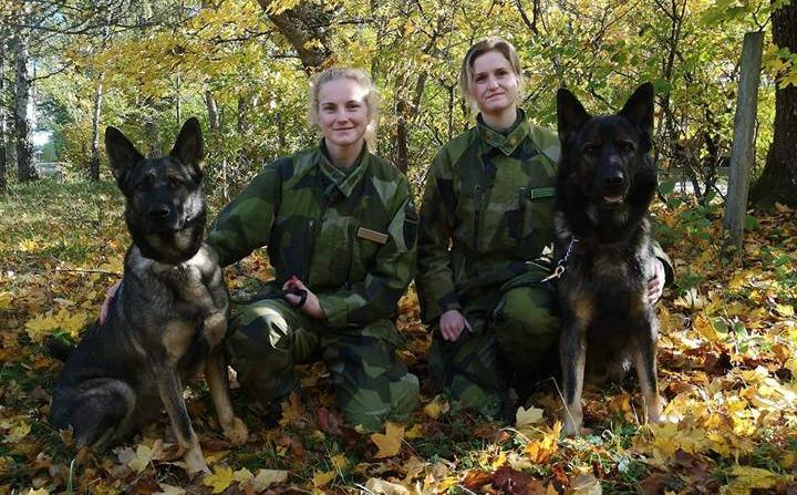 Louise och Jebas Önja patrullhund, Carolin och Jebas Övall patrullhund.