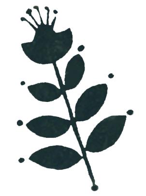 Potters-Tissue-svart