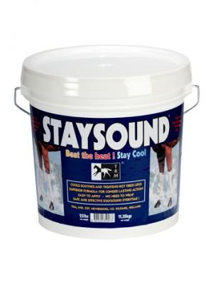 staysound-300x400