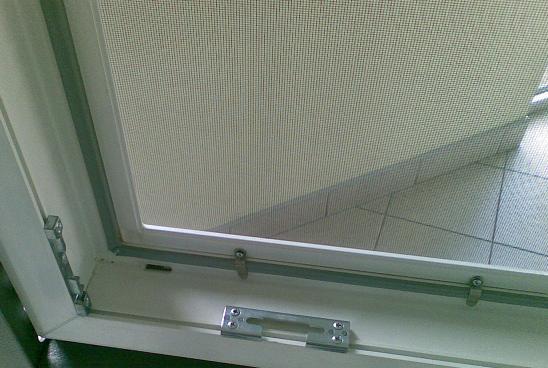fönster med myggnät