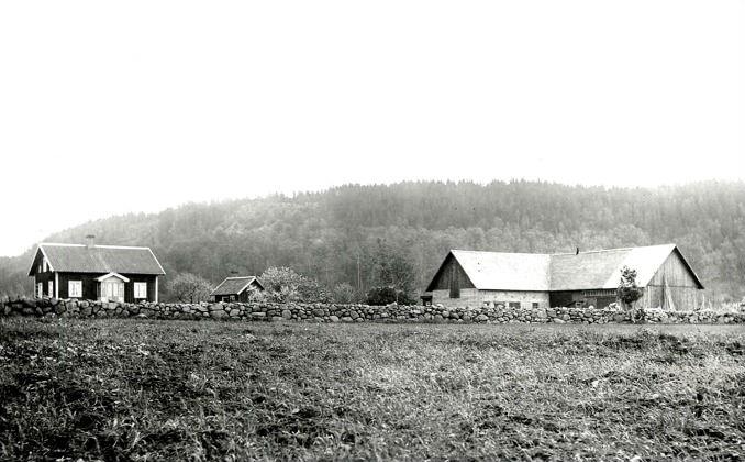Foto från Ingegerd Hermanssons samling, Överbo, Varnhem, 2016. Klicka på bilden för att se den större!