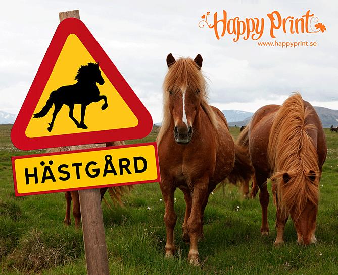 hastgard_island