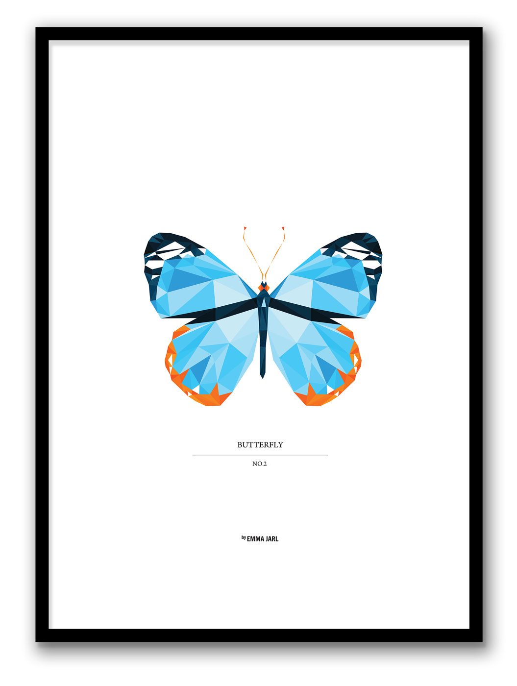 BUTTERFLY-NO2