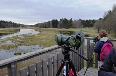 Samling i tornet för lite spaning genom tubkikare först! Foto Eva Stenvång Lindqvist