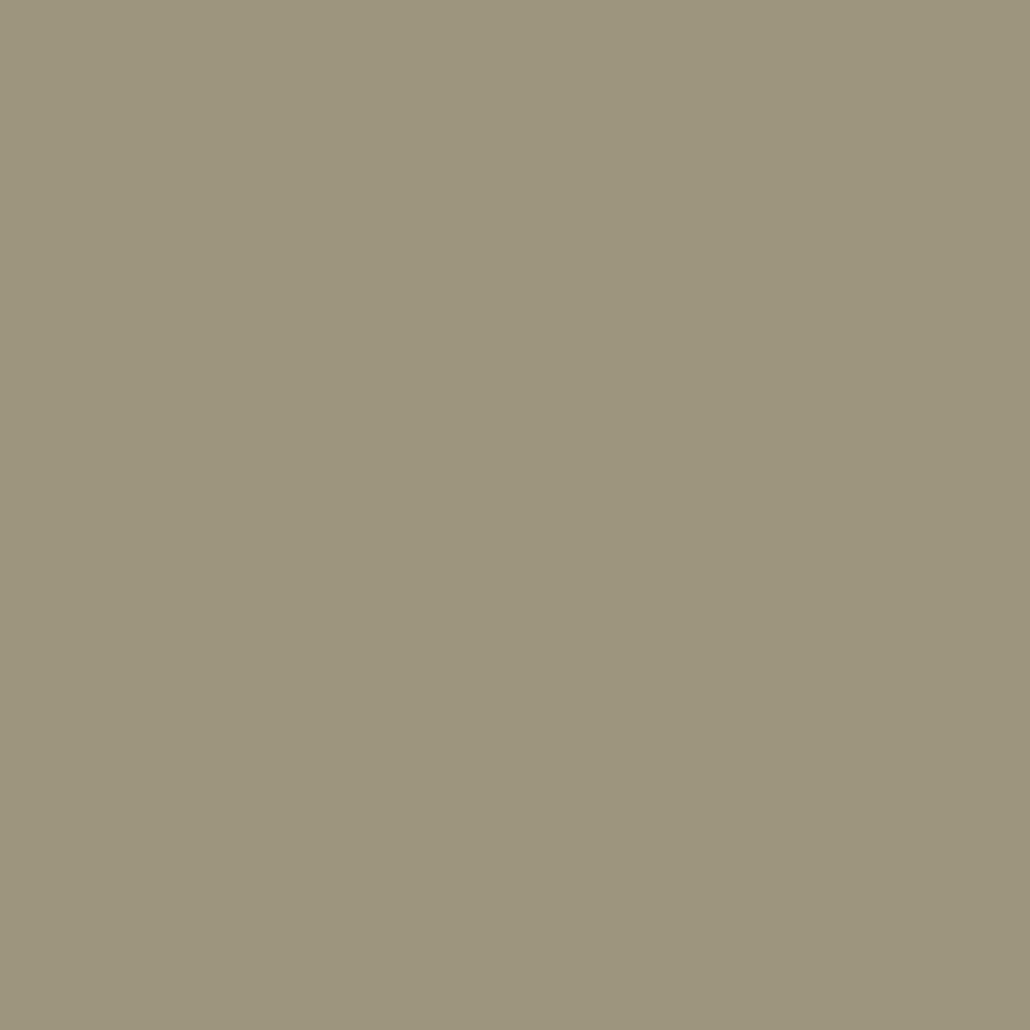 Putty - Taupe Brown