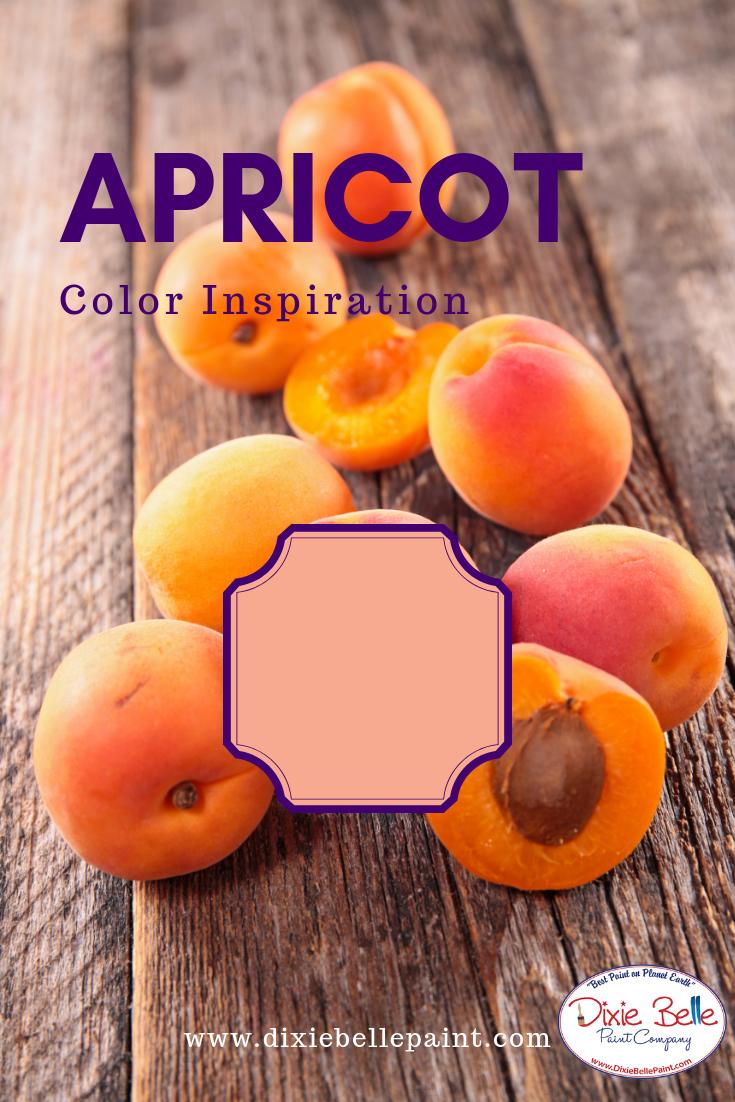 Apricot Color Inspiration Dixie Belle Chalk Mineral Paint