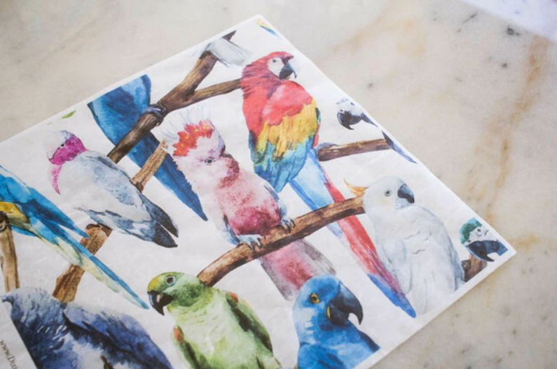 Belles & Whistles Rice Paper - BIRDS