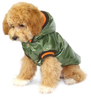 Hundjacka Shining Falk grön - Hundjacka shining falk grön XL