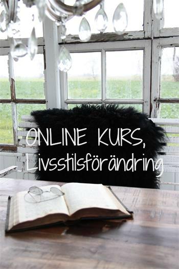 Onlinekurs, livsstil