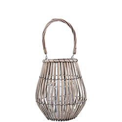 Lantern Willow - Lantern Willow Small