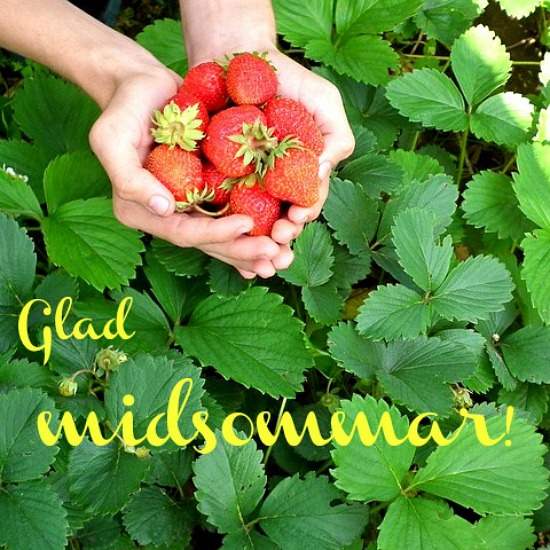 jordgubbar midsommar