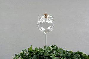Blombevattning Uggla - Blombevattning i glas