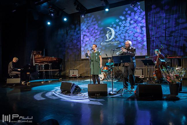 Anna Berglund, Kulturnatten. Foto: Palli Kristmundsson