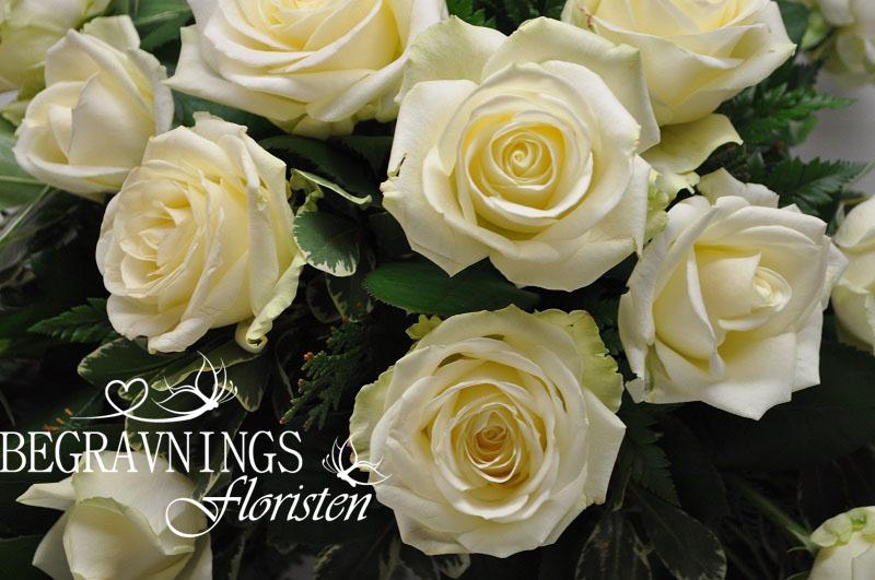 begravningsblommor-vita-rosor