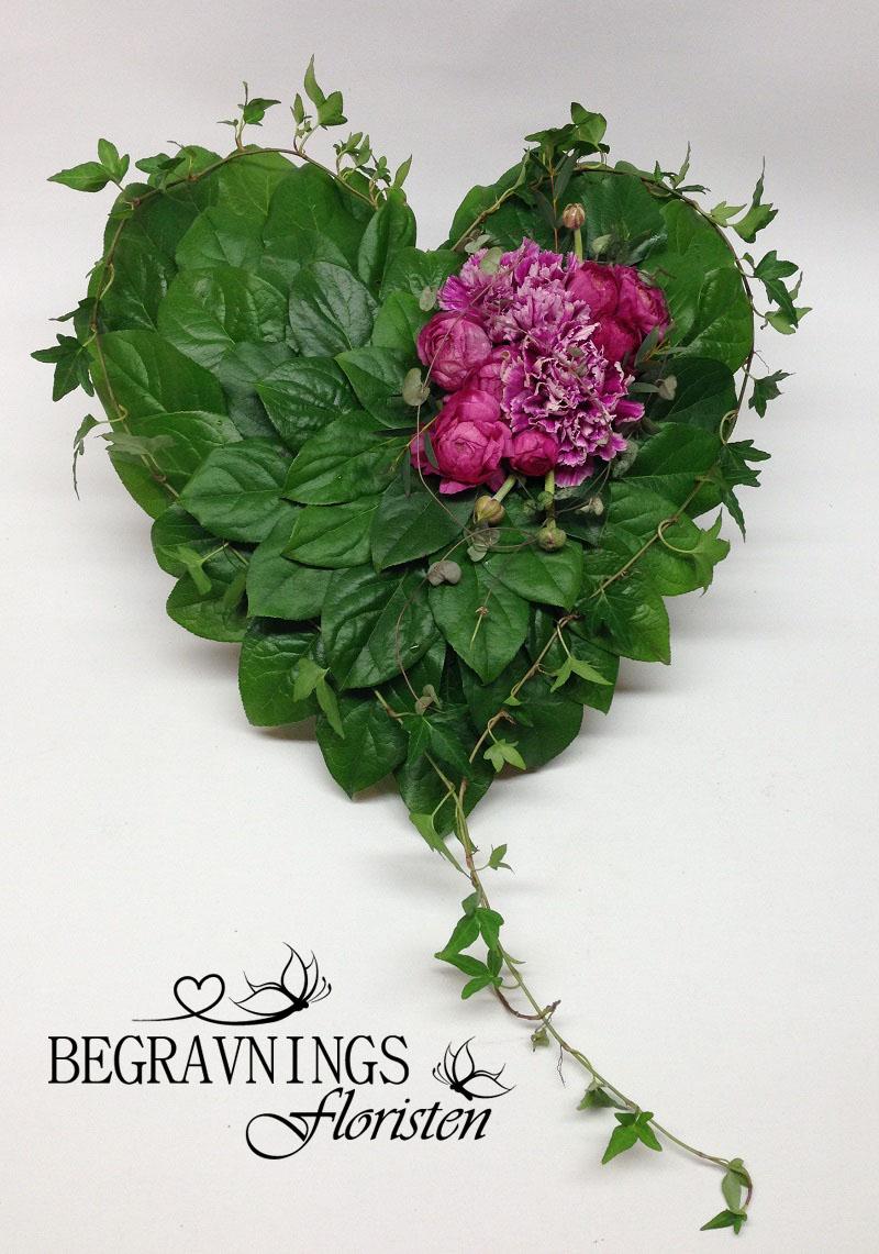 bladhjärta-rosa-blommor-nejlikor