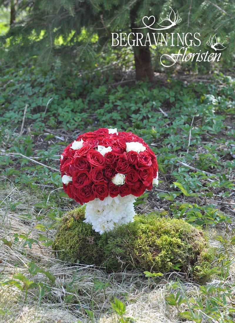 begravning-svamp-av-blommor