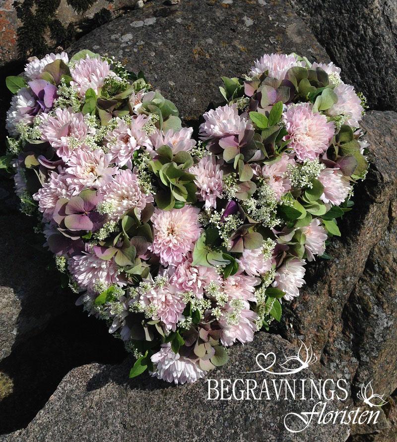 hjärta-begravning-ljusa-färger