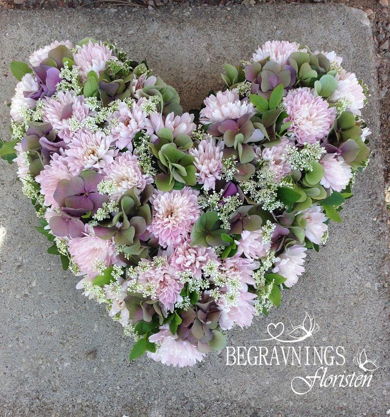 hjärta-begravning-pastellfärger
