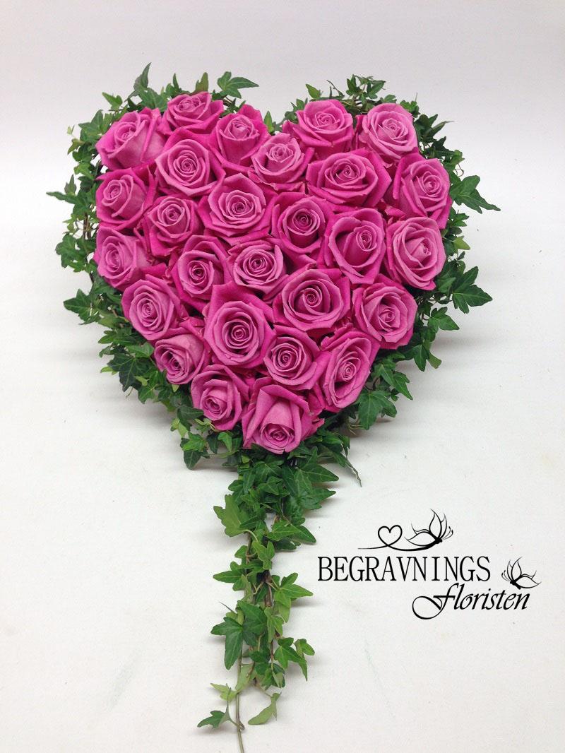 hjärta-rosa-rosor-murgröna