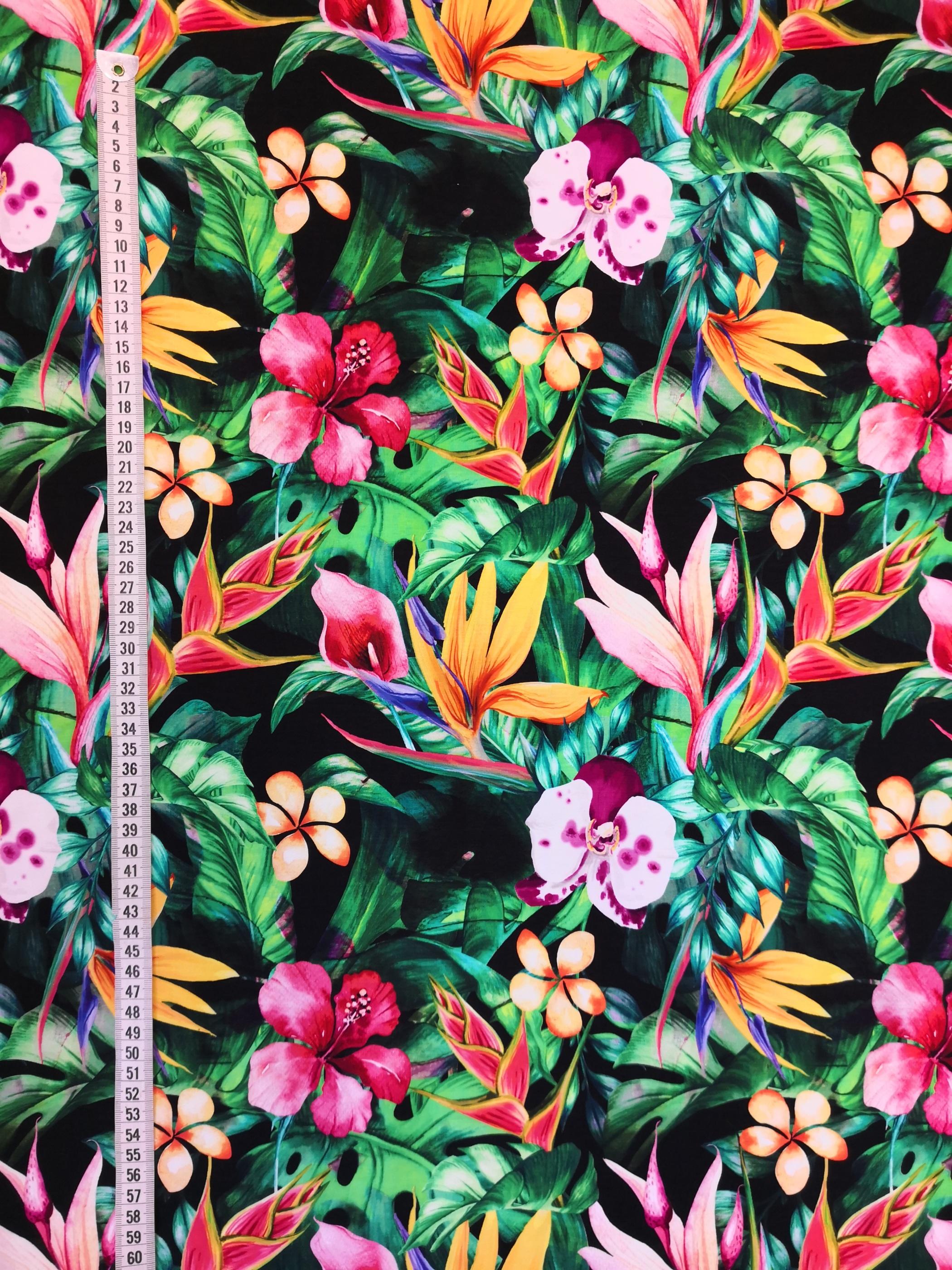 tropiska blommor vy