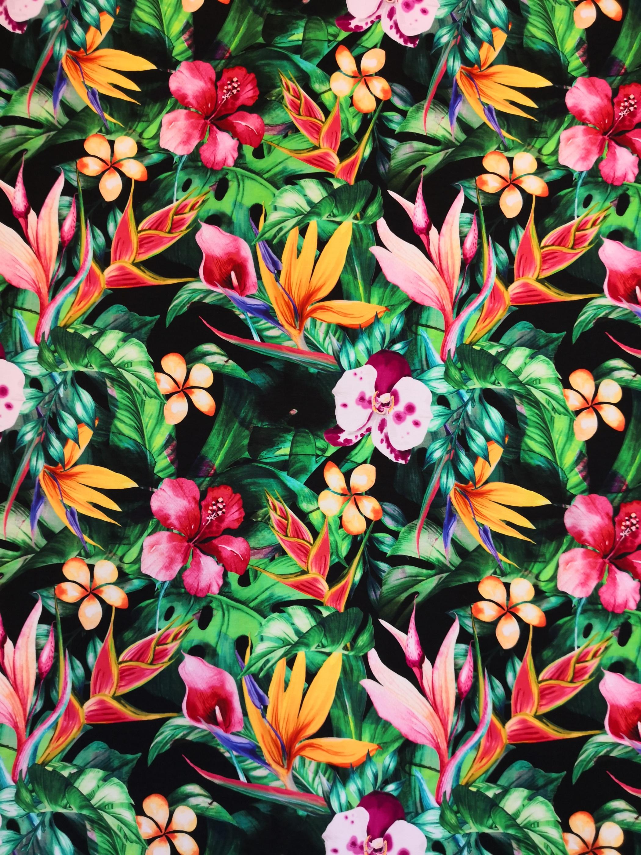 tropiska blommor