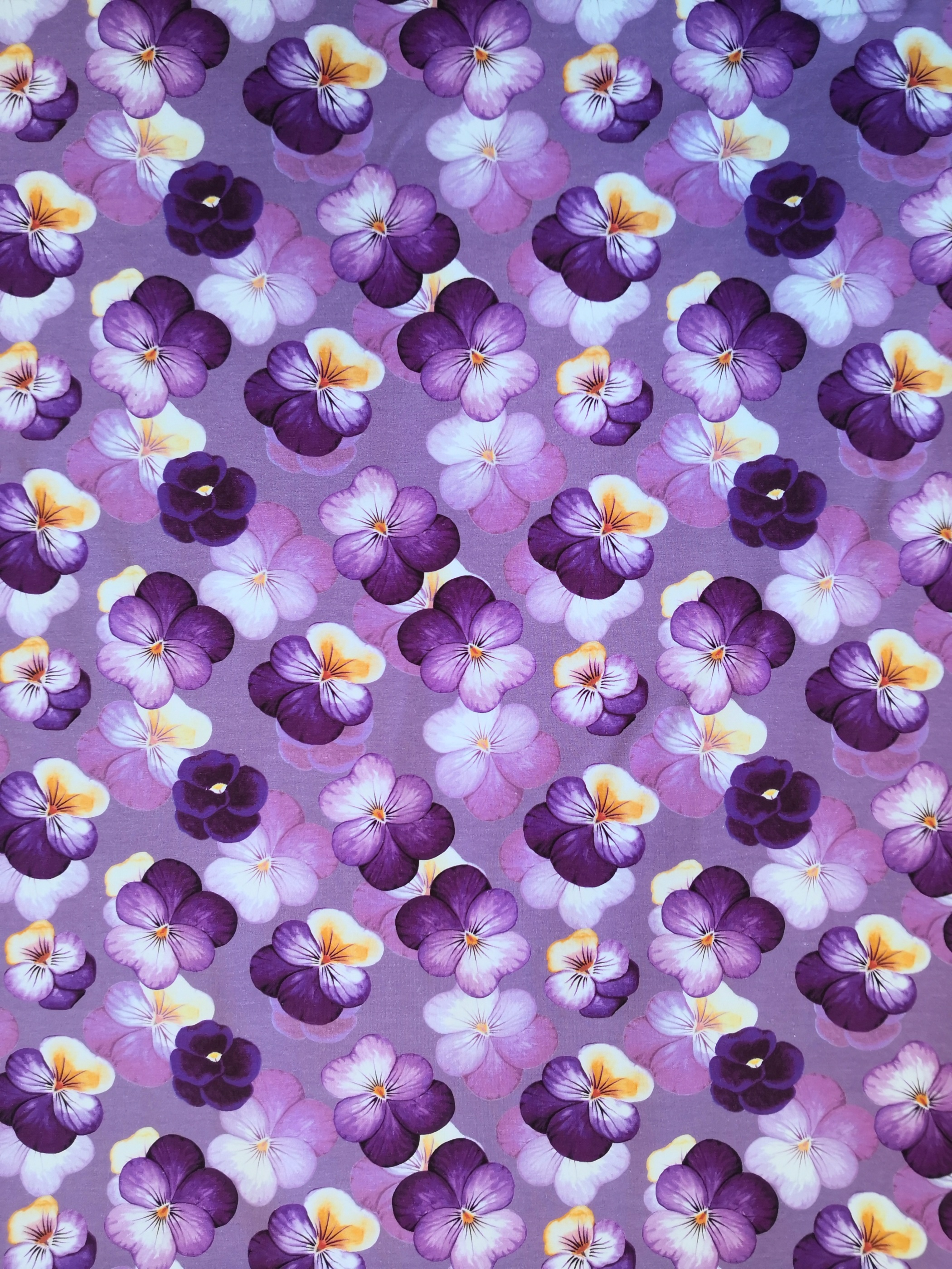 viol lila