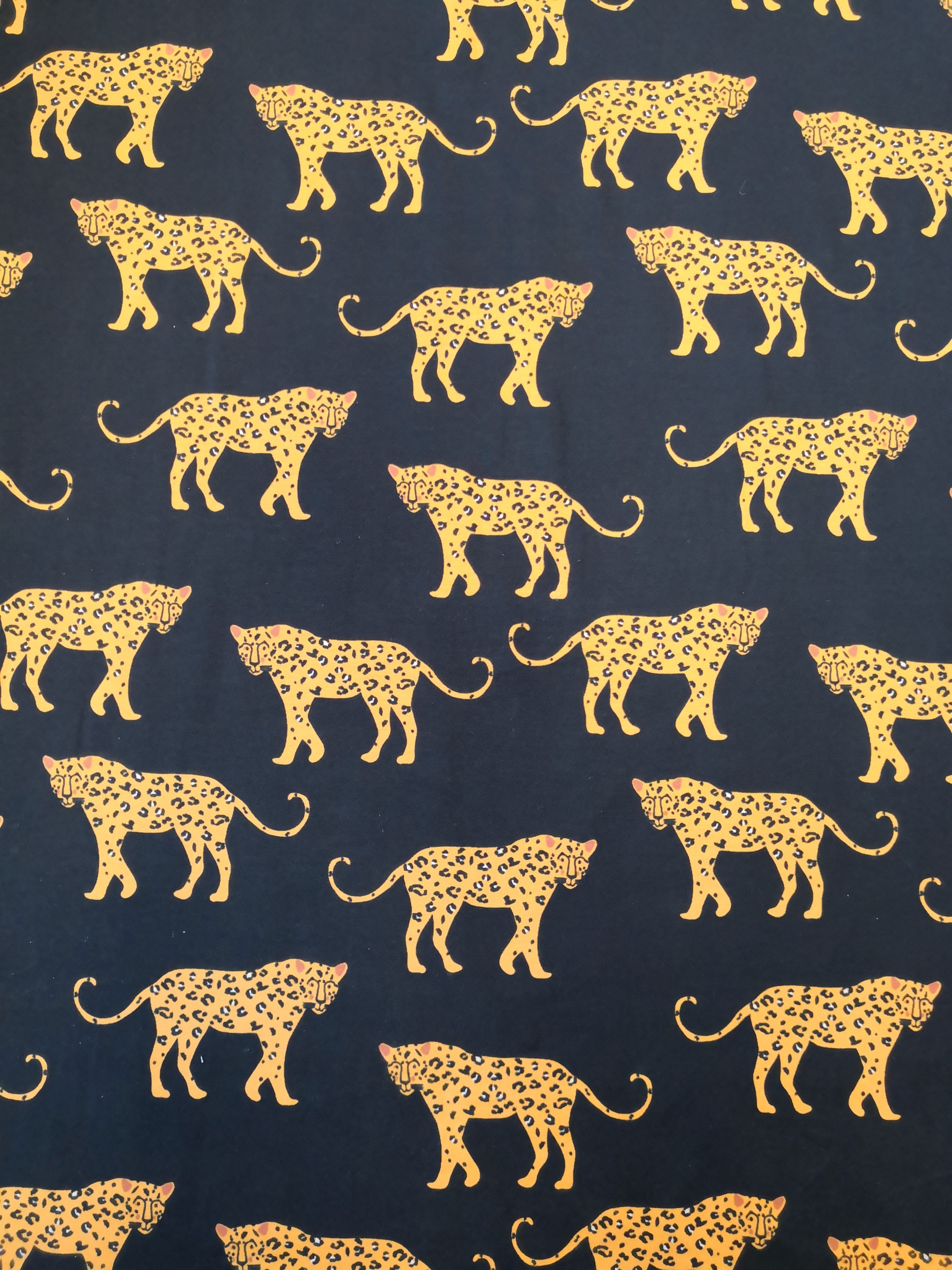 Leopard på svart botten
